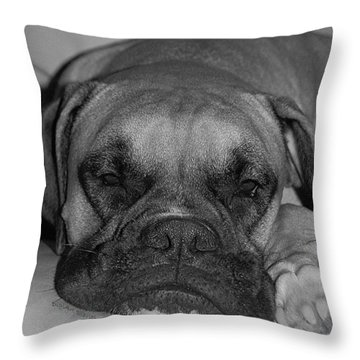 Disturbing His Nap Throw Pillow by DigiArt Diaries by Vicky B Fuller