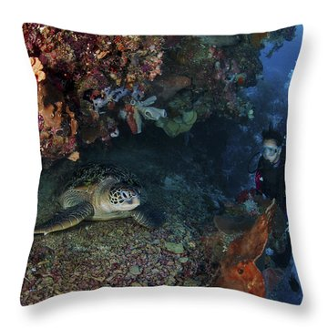 Diver And Sea Turtle, Manado, North Throw Pillow by Mathieu Meur