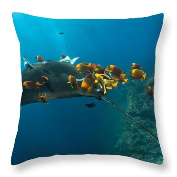 Diver At The Cleaning Station Throw Pillow