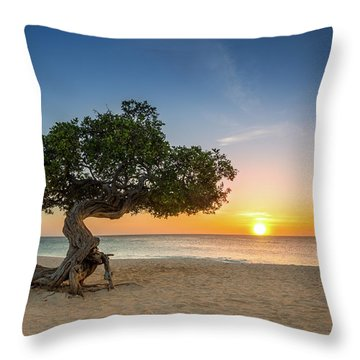 Throw Pillow featuring the photograph Divi Divi by Mihai Andritoiu