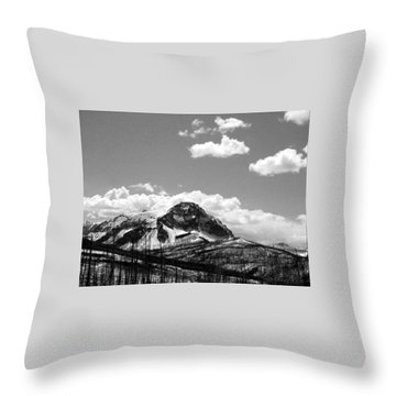 Divide In Blackand White Throw Pillow