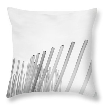 Divided We Stand Throw Pillow
