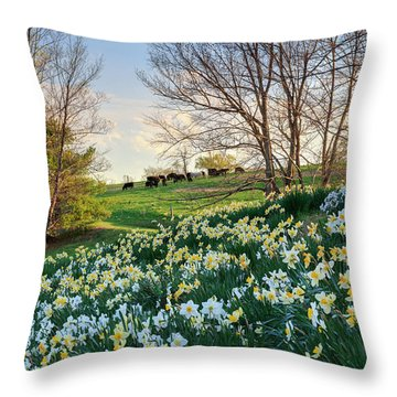 Throw Pillow featuring the photograph Divine Bovines by Bill Wakeley