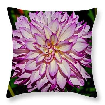 Divine Dahlia Blessings  Throw Pillow