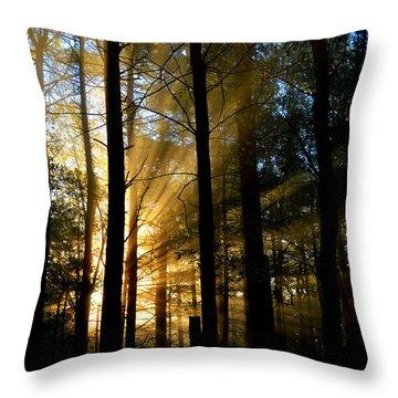 Divine Rays Of Sunshine Throw Pillow