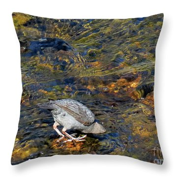 Throw Pillow featuring the photograph Diving For Food by Ausra Huntington nee Paulauskaite