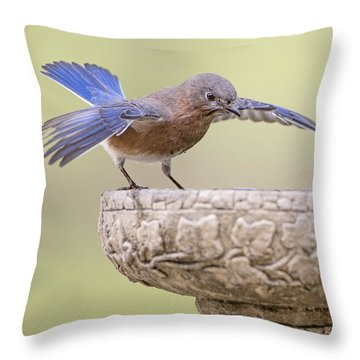 Diving In Throw Pillow by Bonnie Barry