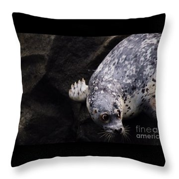 Throw Pillow featuring the photograph Diving In Head First by Nick Gustafson