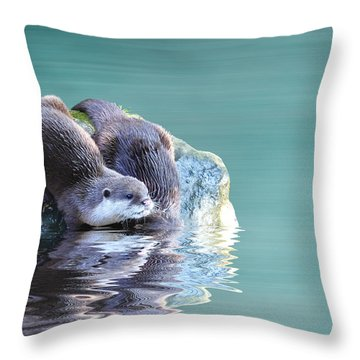 Diving In Throw Pillow by Sharon Lisa Clarke
