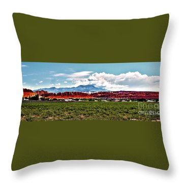 Dixie Red Rocks Throw Pillow