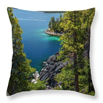 Dl Bliss Lookout By Brad Scott Throw Pillow