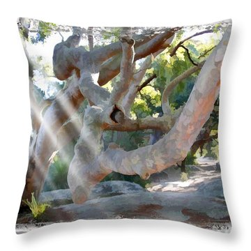 Do-00044 Mount Ettalong Throw Pillow