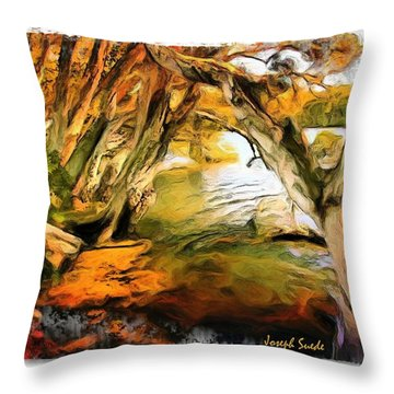 Throw Pillow featuring the photograph Do-00268 Trees On Water In Avoca Estuary by Digital Oil