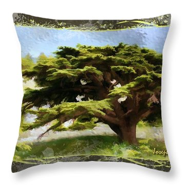 Do-00318 Cedar Barouk - Framed Throw Pillow
