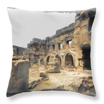 Throw Pillow featuring the photograph Do-00452 Inside The Ruins by Digital Oil