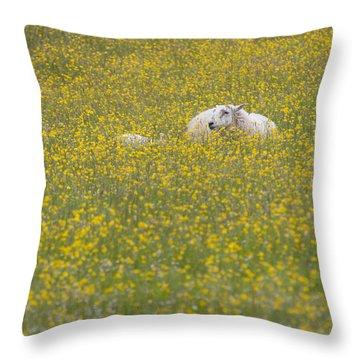 Do Ewe Like Buttercups? Throw Pillow