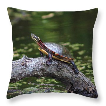Do I Smell Bacon? Throw Pillow