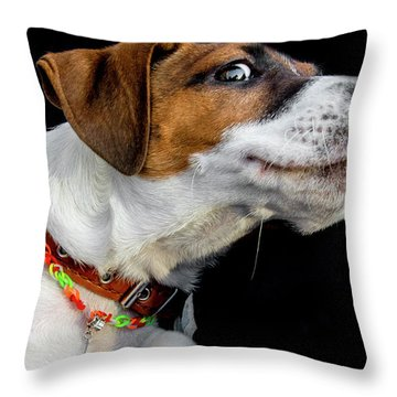 Do Not Confuse Me Throw Pillow