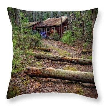 Throw Pillow featuring the photograph Do Not Enter by Alan Raasch