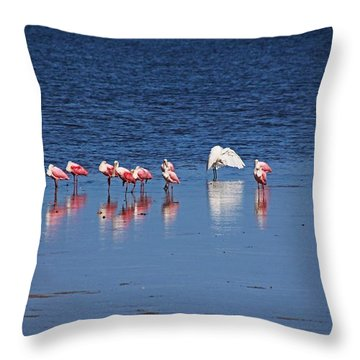 Throw Pillow featuring the photograph Do What You Wanna Do by Michiale Schneider