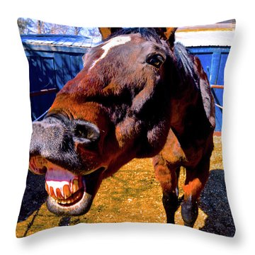 Do You Have A Treat For Me? Throw Pillow