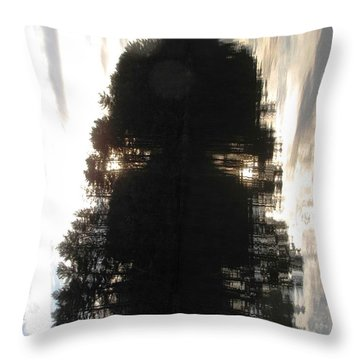 Do You See? Throw Pillow by Melissa Stoudt