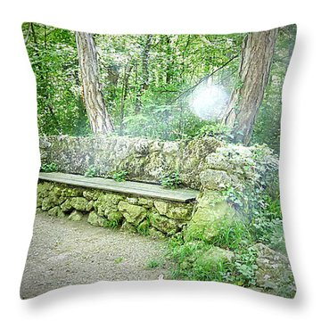 Throw Pillow featuring the photograph Do You Want To Take A Rest by Bee-Bee Deigner