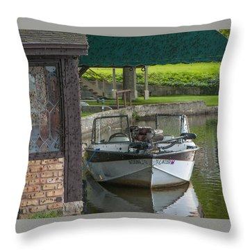 Docking Mayflies Throw Pillow