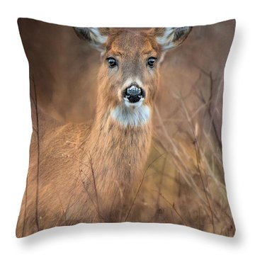 Throw Pillow featuring the photograph Doe A Deer by Robin-lee Vieira