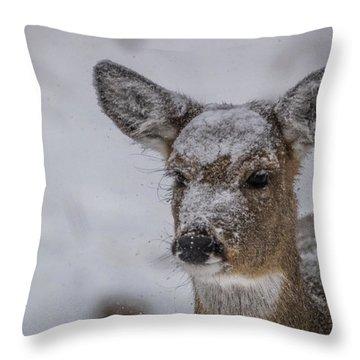 Doe In A Blizzard Throw Pillow