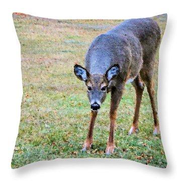 Doe Stomp Throw Pillow by Kristin Elmquist