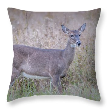 Throw Pillow featuring the photograph Doe by Tyson Smith