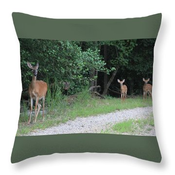 Doe With Twins Throw Pillow