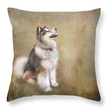 Throw Pillow featuring the digital art Master Of The Domain by Colleen Taylor