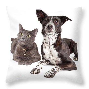 Dog And Cat Laying Looking Up Throw Pillow by Susan Schmitz