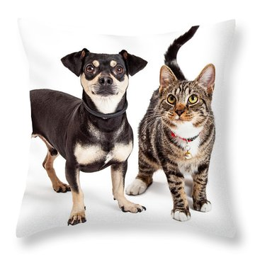 Dog And Cat Standing Looking Up Together Throw Pillow by Susan Schmitz