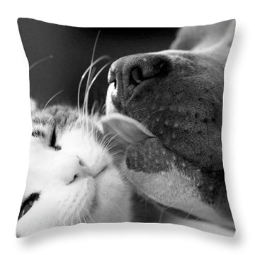 Dog And Cat  Throw Pillow by Sumit Mehndiratta