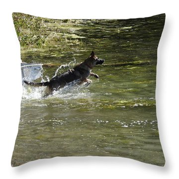 Dog Chasing His Stick Throw Pillow