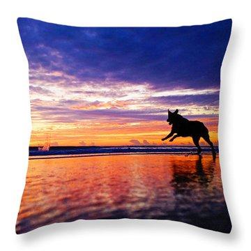 Dog Chasing Stick At Sunrise Throw Pillow