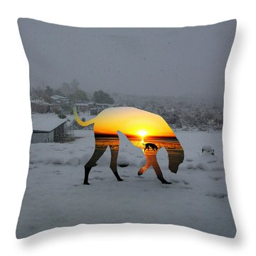 Dog Day Afternoon Throw Pillow by Snake Jagger