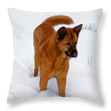 Dog Days Of Winter Throw Pillow