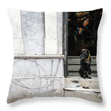 Dog From The Block Throw Pillow