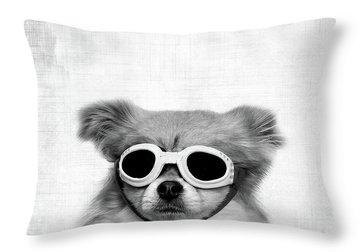 Cute Dogs Throw Pillows