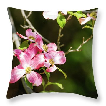 Dog-gone Pretty Throw Pillow