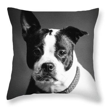 Dog - Monochrome 1 Throw Pillow