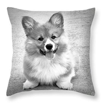 Puppy - Monochrome 6 Throw Pillow