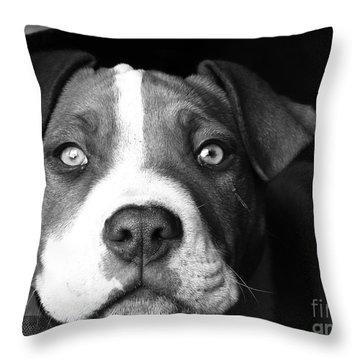 Dog - Monochrome 2 Throw Pillow