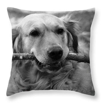 Dog - Monochrome 4 Throw Pillow