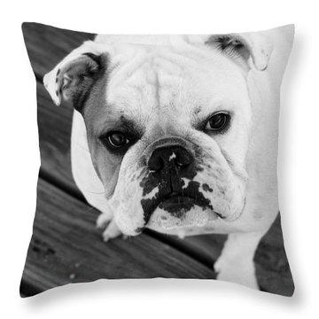 Dog - Monochrome 6 Throw Pillow