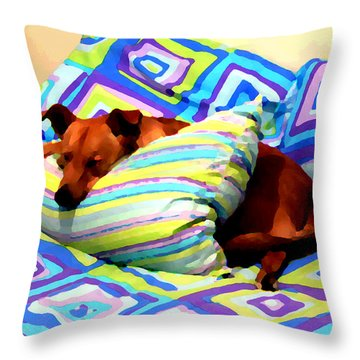 Dog Nap - Oil Effect Throw Pillow